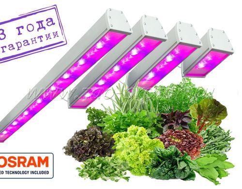 """Спектр светильников содержит большую составляющую глубокого"""" синего (DeepBlue 451 нм) спектра. Предназначены для стимуляции ускоренного роста при выращивании зеленых овощных культур."""