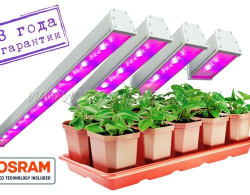 Спектр светильников сбалансирован для универсального применения. Может использоваться как для досветки зеленых овощных культур, так и для плодоносящих. Оптимально - для досветки рассады перед высадкой в грунт и для выращивания цветочных культур. При использовании светильников данного типа растение имеет оптимальное соотношение интенсивности роста и набора зеленой массы. При этом очень хорошо развивается корневая система.