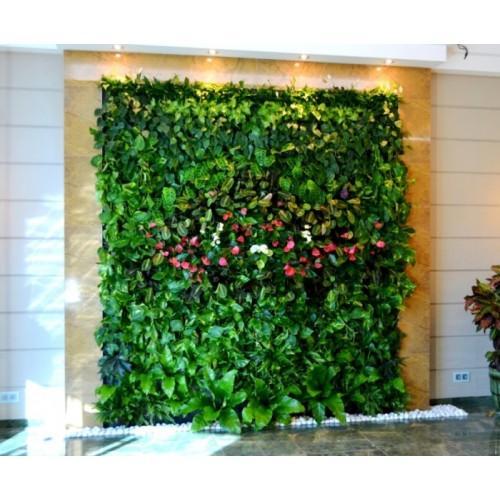 Вертикальный сад в коробке на 24 растения Это специальная конструкция, благодаря которой обычные растения живут на стенах и других вертикальных поверхностях