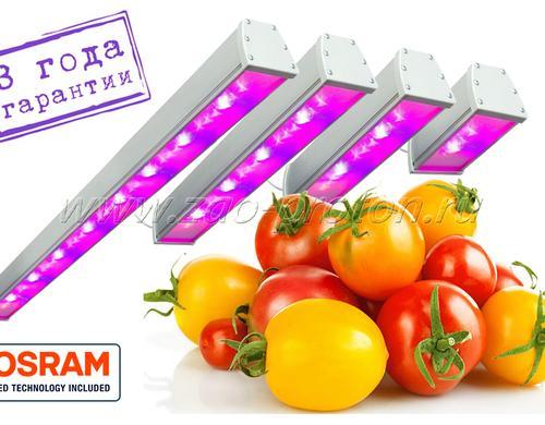 Светодиодный фитосветильник с максимальной спектральной эффективностью SSO-220/64-05.2(FGO-MP) Спектр светильников содержит большую составляющую гипер красного (HyperRed 660 нм) спектра. Предназначены для досветки плодоносящих культур, требовательных к качеству освещения - огурцы, томаты, перец и т.п.