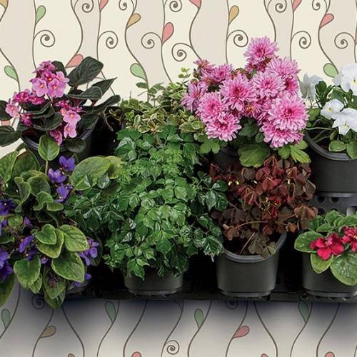 """Вертикальная панель для растений Ботанический сад"""" Каждый стремится украсить свой дом, сделать его уютным и гостеприимным. Всем известно, что комнатные цветы очищают воздух и радуют глаз. Представьте, за окном пасмурно и хмуро – а у Вас дома настоящий «Ботанический сад»"""