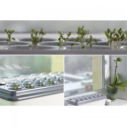 Домашняя чудо-грядка (гидропонная система)  Предназначена для выведения рассады, укоренения черенков, выращивания лука и зелени.